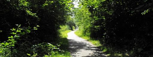 A photograph of The Cuckoo Trail in Heathfield